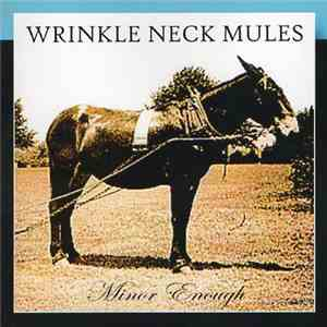 Wrinkle Neck Mules - Minor Enough
