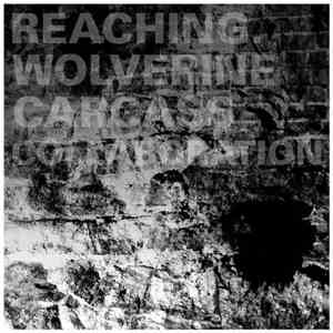 Reaching. / Wolverine Carcass - Collaboration